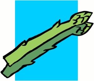 asparagus[1]