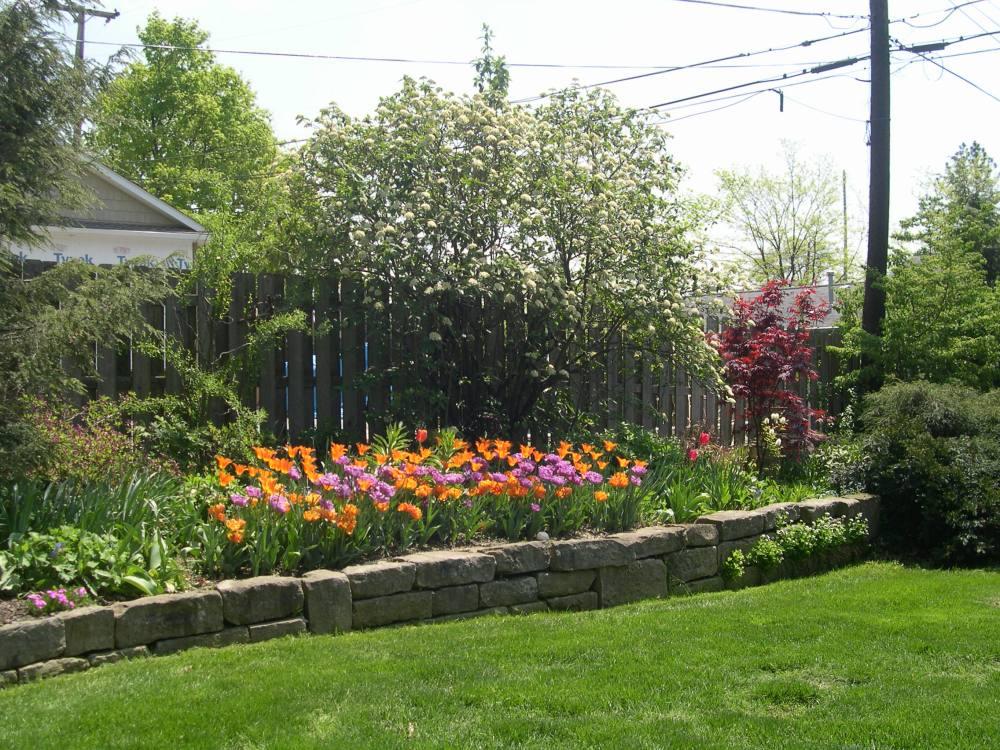 Dempster,  Susie      Akron, Ohio (4/4)