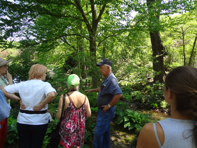 Private tour: The Mimi Gale Gardens in Spring (2/2)
