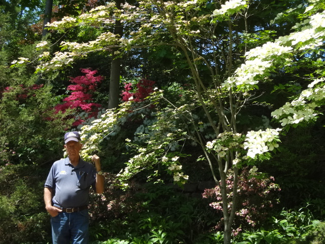 Private tour: The Mimi Gale Gardens in Spring (1/2)